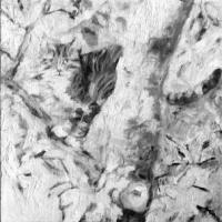 Foto ja maal, 2014, Ilmub ja kaob, õli lõuendil 30x30cm